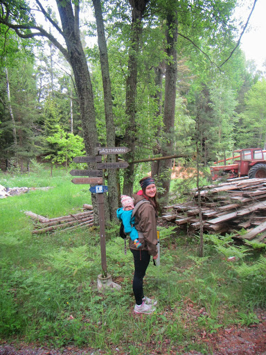 Finnhamn: Saunas, hiking, row boats, red ants and much more!