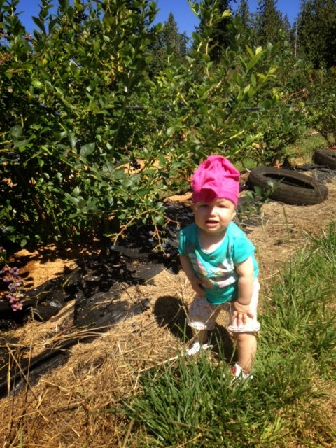 The Mr. Snuffleupagus style of the Pants Hat. The style was used while blueberry picking.
