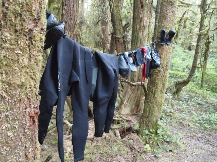 Drying all our wetsuits after a day of surfing! Don't expect them to get completely dry.