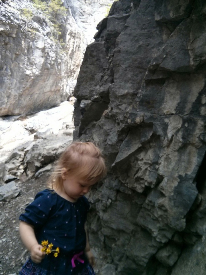hiking toddler